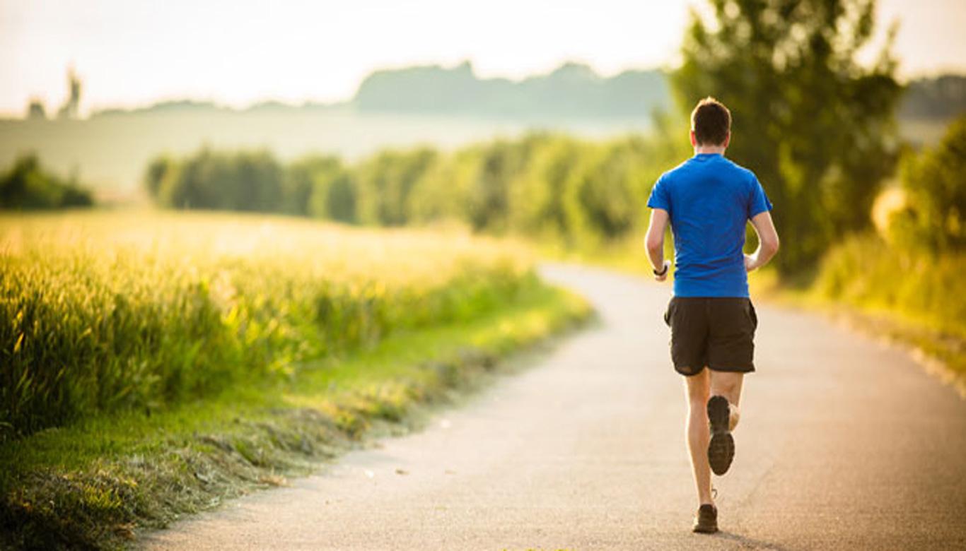 ورزش و حیطههای اثر گذار